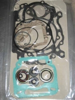 Комплект прокладок двигателя Rotax MAX